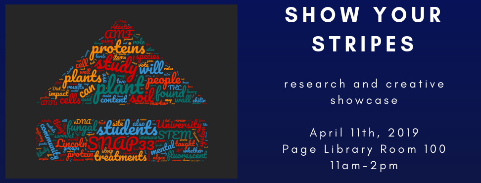 2019 Show Your Stripes Research and Creative Showcase